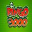 Bingo 3000