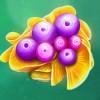 Fruitoids online