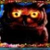Owl Eyes online