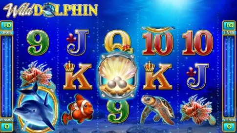 Wild Dolphin Spielautomat Kost…